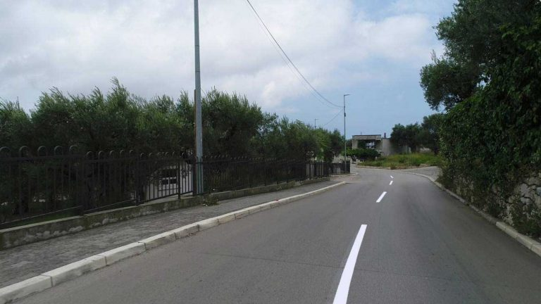 """Reconstruction works on the """"Biskupada-Belveder"""" road"""